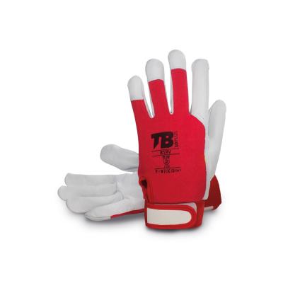 Pracovní rukavice - pracovní rukavice Tomas Bodero 81RV - R100167
